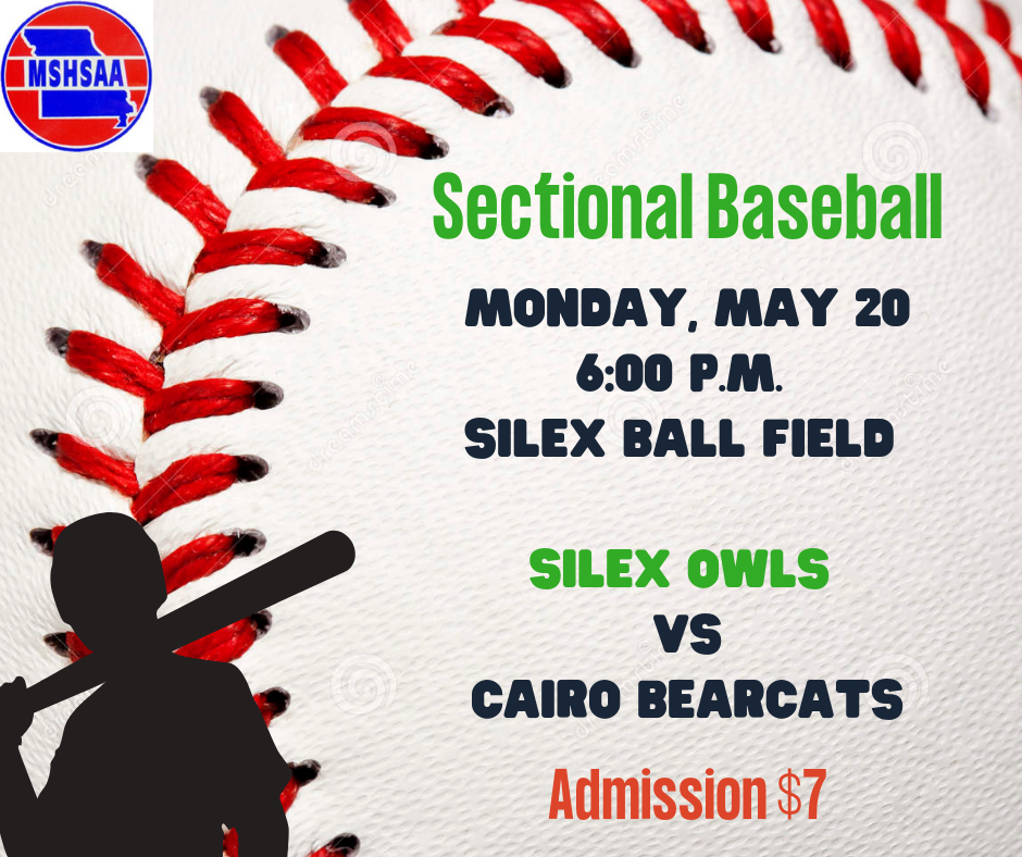 Sectional Baseball