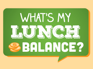 Large_negative_lunch_balance
